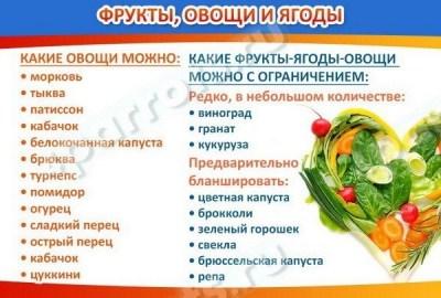 kakie frukty ovoshhi yagody i zelen mozhno davat popugaju
