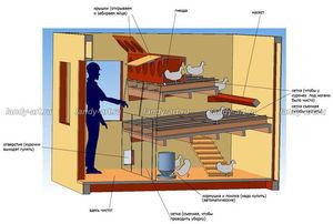 ventilyaciya v kuryatnike kak sdelat svoimi rukami